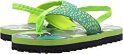 Hatley Kids Friendly Manta Rays  (Toddler/Little Kid)