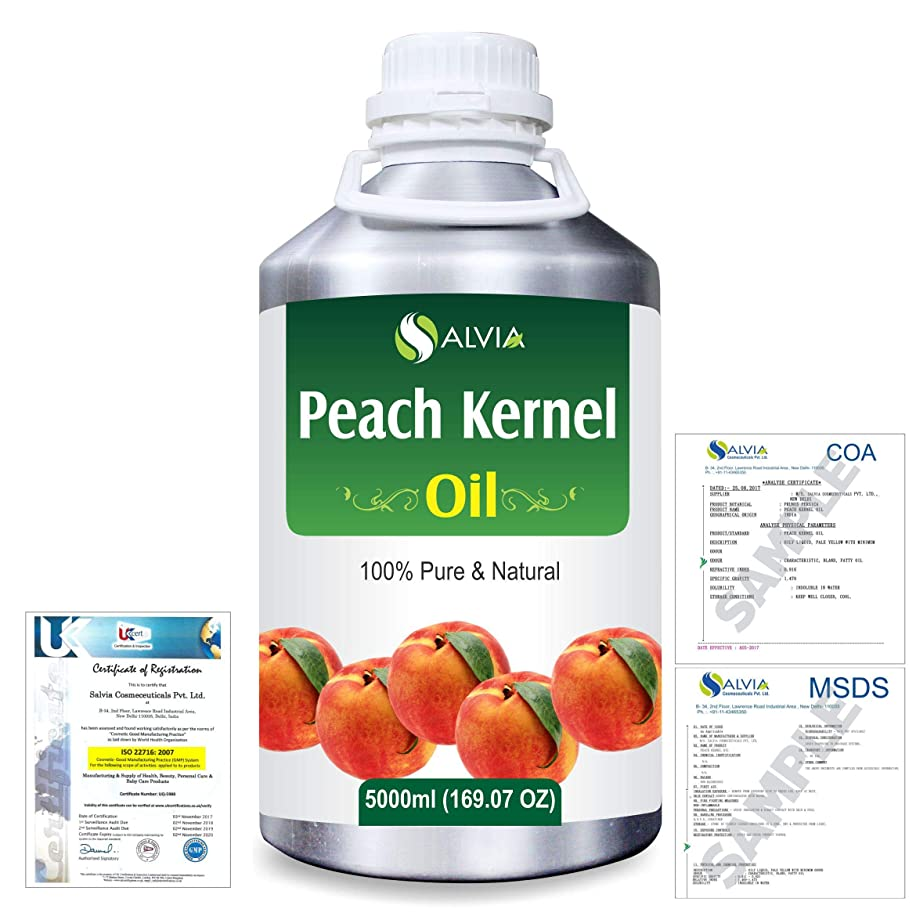 穏やかな怒って医療過誤Peach Kernel (Prunus persica) Natural Pure Undiluted Uncut Carrier Oil 5000ml/169 fl.oz.