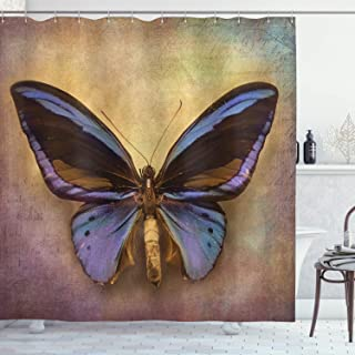 Ambesonne Butterfly Shower Curtain, Monarch Butterfly Vintage British Grunge Victorian Photography Art Theme Print, Cloth Fabric Bathroom Decor Set with Hooks, 70
