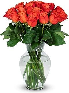 Benchmark Bouquets 2 Dozen Orange Roses, With Vase (Fresh Cut Flowers)