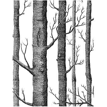 Birch Tree Peel And Stick Wallpaper Backsplash Peel Stick Or Wall Paper Prepasted Wall Paper Or Adhesive Shelf Paper Black And White Wood Stick Wallpaper 17 71 Wide X 118 Long Amazon Com