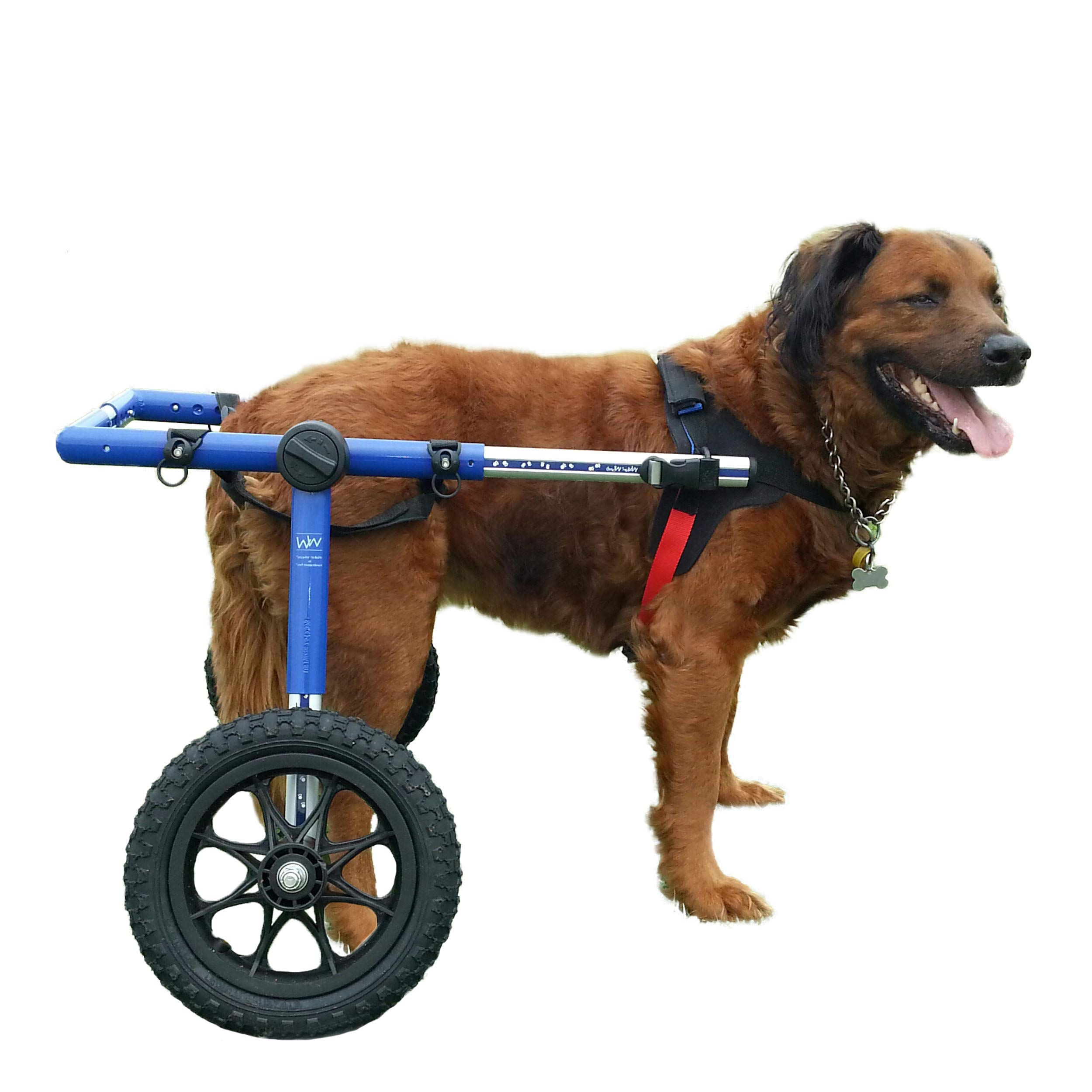Amazon.com : Walkin' Wheels Dog Wheelchair - for Large Dogs 70-180 Pounds -  Veterinarian Approved - Dog Wheelchair for Back Legs : Disabled Dog Cart :  Pet Supplies