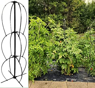 Scroll Trellis Single Pack Stack Trellis 20 Inch Wide and 58 Inch Tall Heirloom Tomato Plant cage Lead, Mercury, BPA-Free, Pole Bean Trellis or Pea Trellis, Mandevilla, Clematis Obelisk (1)