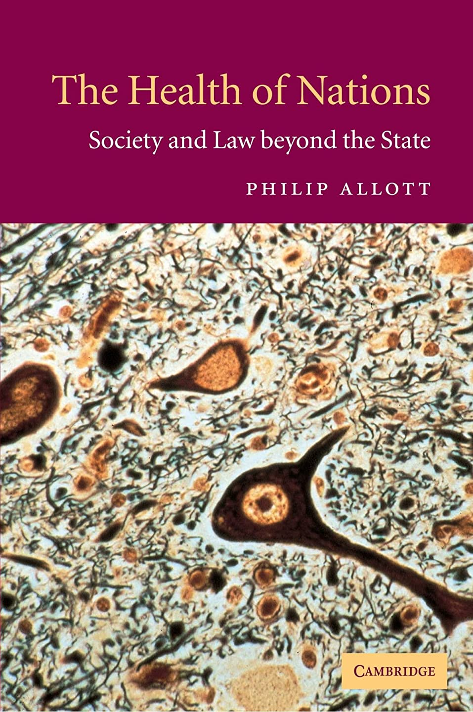 アドバンテージ組み合わせ軸The Health of Nations: Society and Law beyond the State