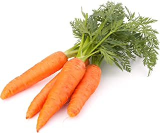 Best collecting carrot seeds Reviews