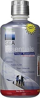 Sea Essentials Vital Nutrients with Coral Calcium, Sea Berry, 32 Ounces