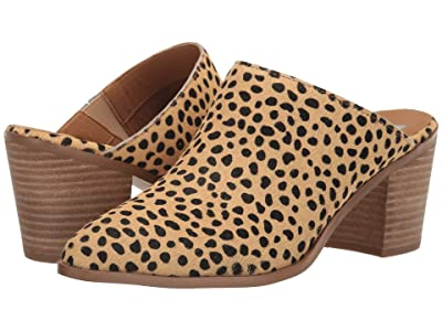 DV Dolce Vita Freya (Cheetah) Women