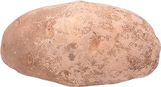 Potato Russet Conventional, 1 Each