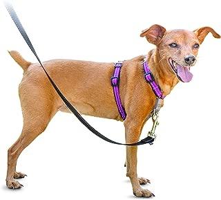 Best dog bone harness Reviews