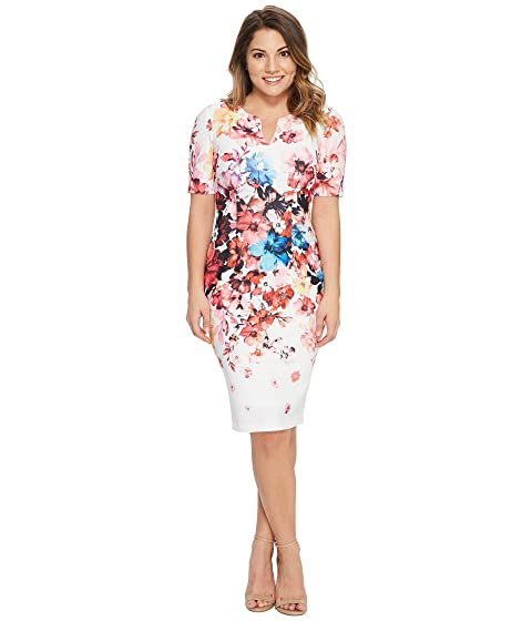 Adrianna Papell Petite Spring in Bloom Printed Sheath at Zappos.com