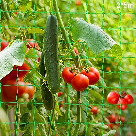 Malla Plantas de Vid,Multiusos Malla,Tomates y Plantas trepadora,Red de Enrejado Jardín,Valla de Cultivo,malla vegetal para frijol de guisante,Red para Pájaros,Poliéster Red de Jardin (2 * 5M)