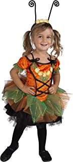 pixie pumpkin patch