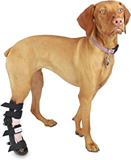 Walkin' Fit Adjustable Pet Splint   Dog Foot Splint Helps Brace Lower Front and Rear Leg Injuries   Custom Fit and Support for Your Dog