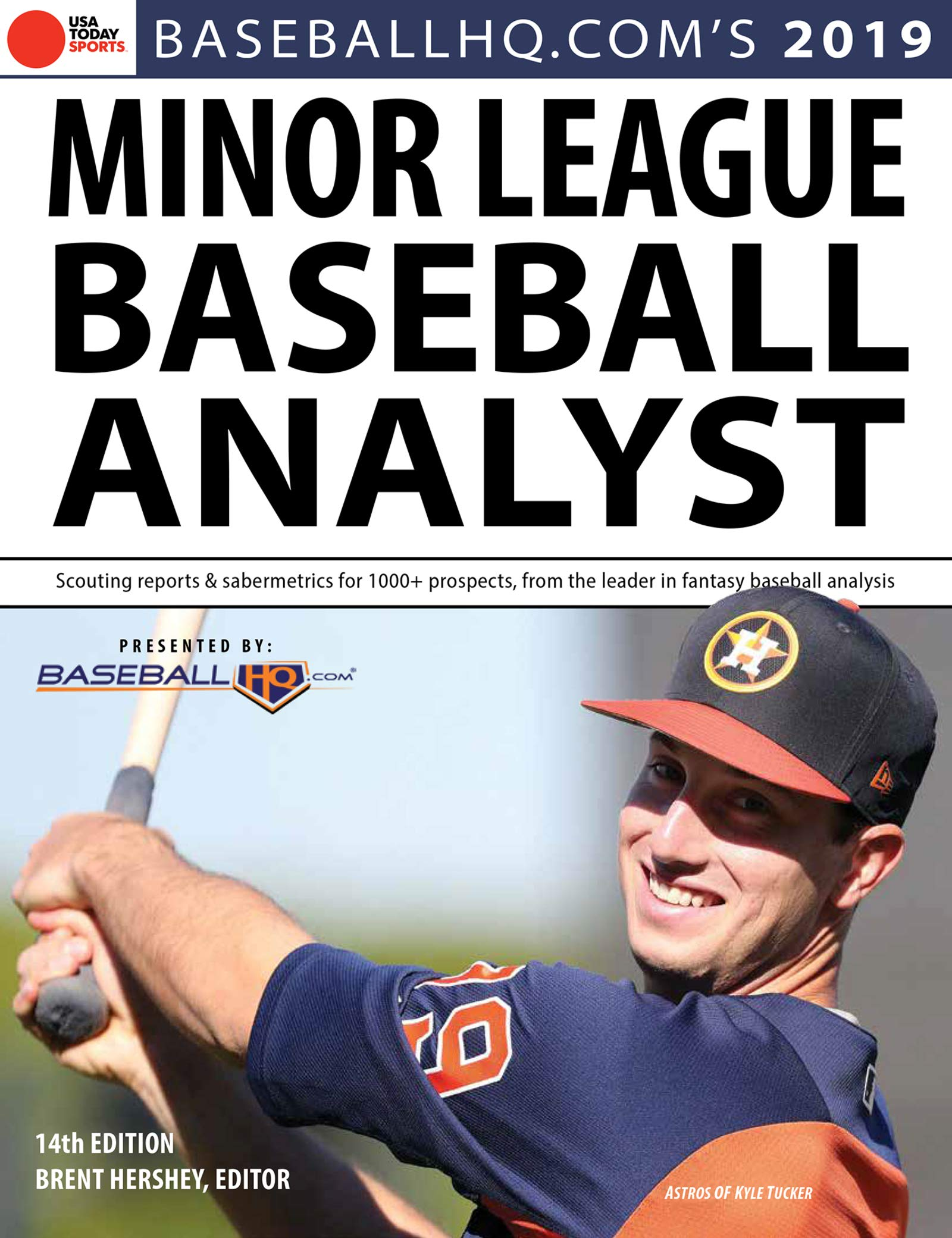 Image Of2019 Minor League Baseball Analyst (English Edition)