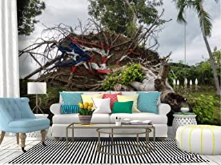 Fallen Tree from Hurricane Maria in san Juan Puerto ricos and Canvas Print Wallpaper Wall Mural Self Adhesive Peel & Stick Wallpaper Home Craft Wall Decal Wall Poster Sticker for Living Room