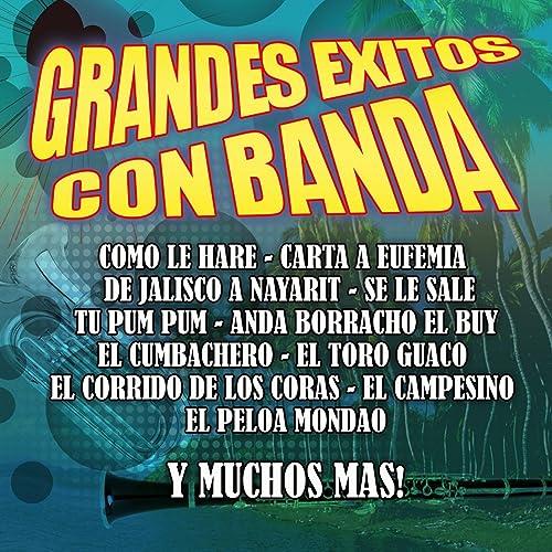 Grandes Exitos Con Banda