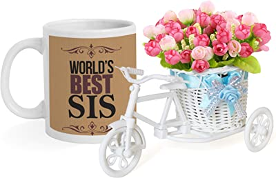 TIED RIBBONS Gifts for Sisters Birthday Special Cycle Vase with Flower and Printed Coffee Mug