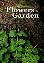 Flowers and Garden: Flowers Photo Collection - Vol. 4
