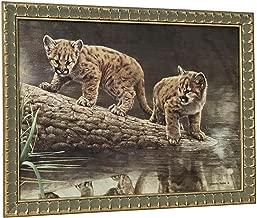 Charles Frace REFLECTIONS Cougar Cubs Framed Art Canvas