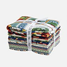 Connecting Threads Print Collection Precut Quilting Fabric Bundle Fat Quarter Sampler (Fruit Stand)