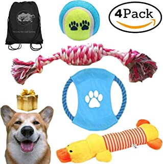 Mystic Soul Dog Chewable Toys Set - Gift Pack of 4 Resistance Durable Toy Playtime + Gift Bag for Chewers - Small and Medium Dogs …