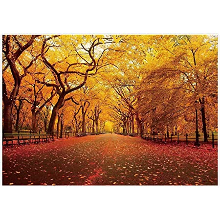 GoEoo 6x4ft Fall Nature Park Scenery Background Rustic Autumn Fallen Leaf Photography Backdrop Woods Tree Forest Road Landscape Photo Studio Props Rural Thanksgiving Holiday Party Decor Vinyl Banner