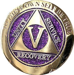 5 Year Elegant Glitter Purple Gold Silver Bi-Plated AA Medallion Chip