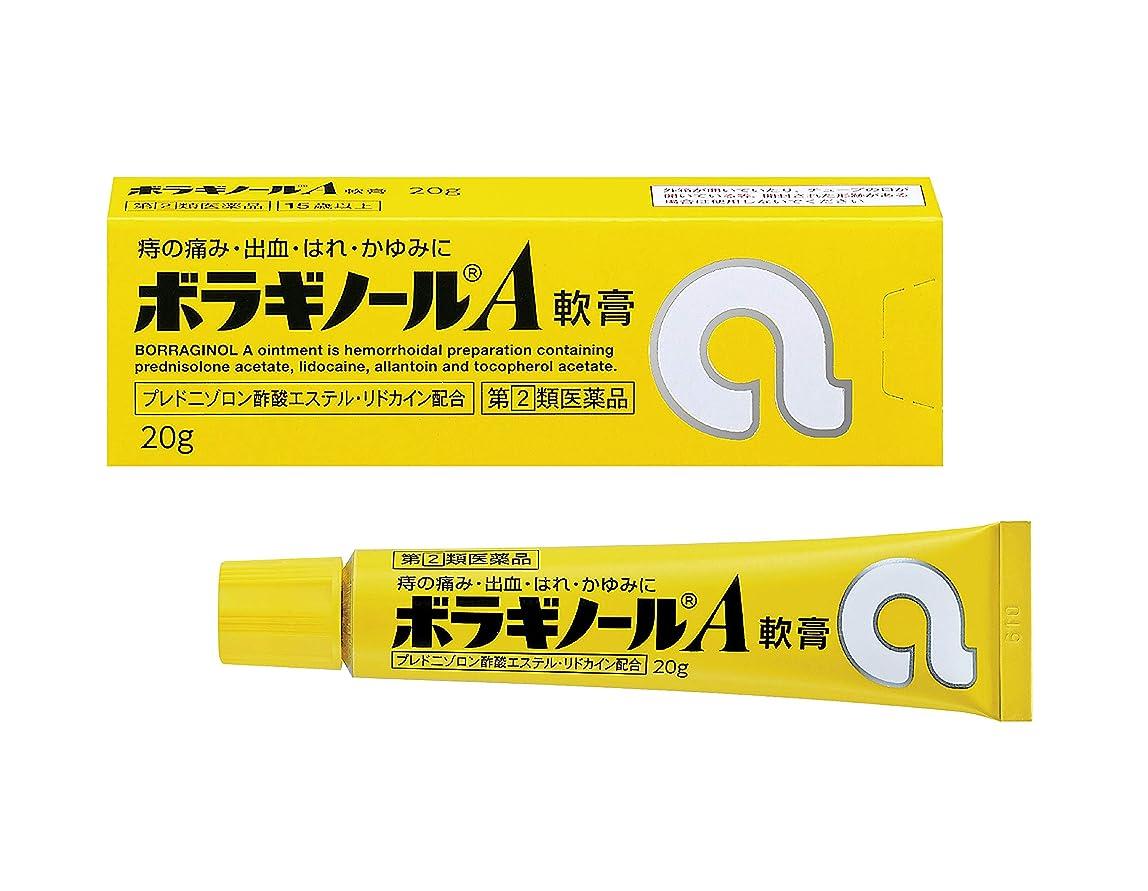 北放散する急性【指定第2類医薬品】ボラギノールA軟膏 20g