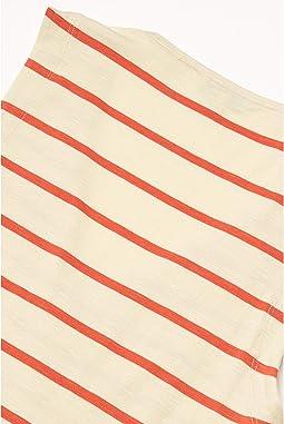 Desert Wide Stripe