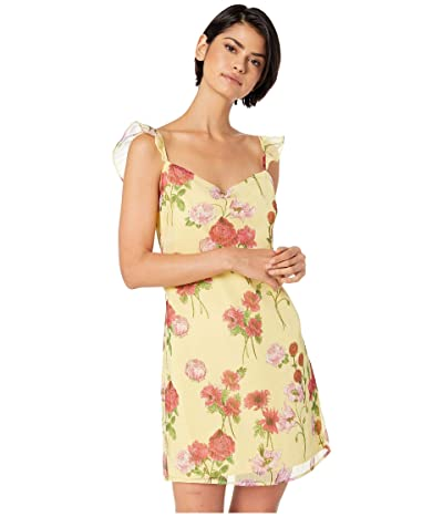 BB Dakota Sweet Escape Dress (Botanical Rose) Women