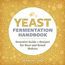 noma cookbook fermentation