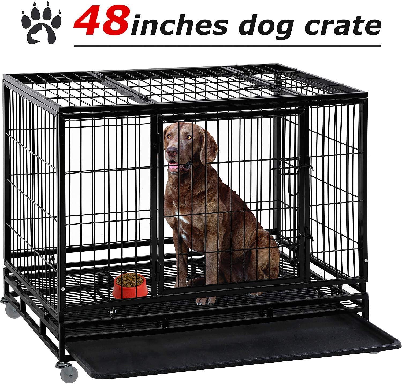 consumer reports best dog crates