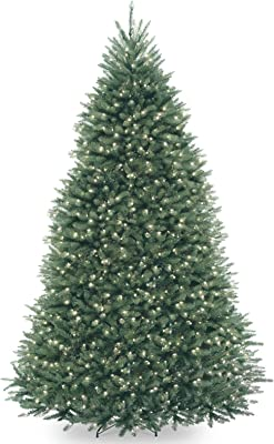 National Tree Dunhill Fir Tree, Blue