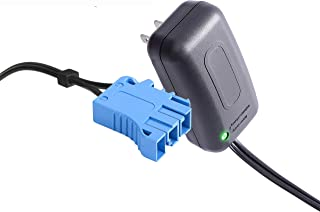 12 Volt Battery Charger for Peg Perego John Deere Ground Force Tractor John Deere Gator XUV Polaris RZR 900 Outlaw Citrus, 12V Charger Works with Peg-Perego Child Ride On Toys