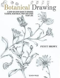 Best botanical vegetable drawings Reviews