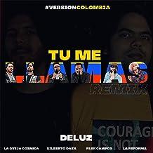Tu Me Llamas (Remix)