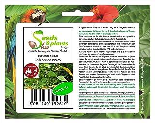 Stk - 5x Turuncu Spiral Samen Saatgut Küche Garten Pflanze Chili samen PW25 - Seeds Plants Shop Samenbank Pfullingen Patrik Ipsa