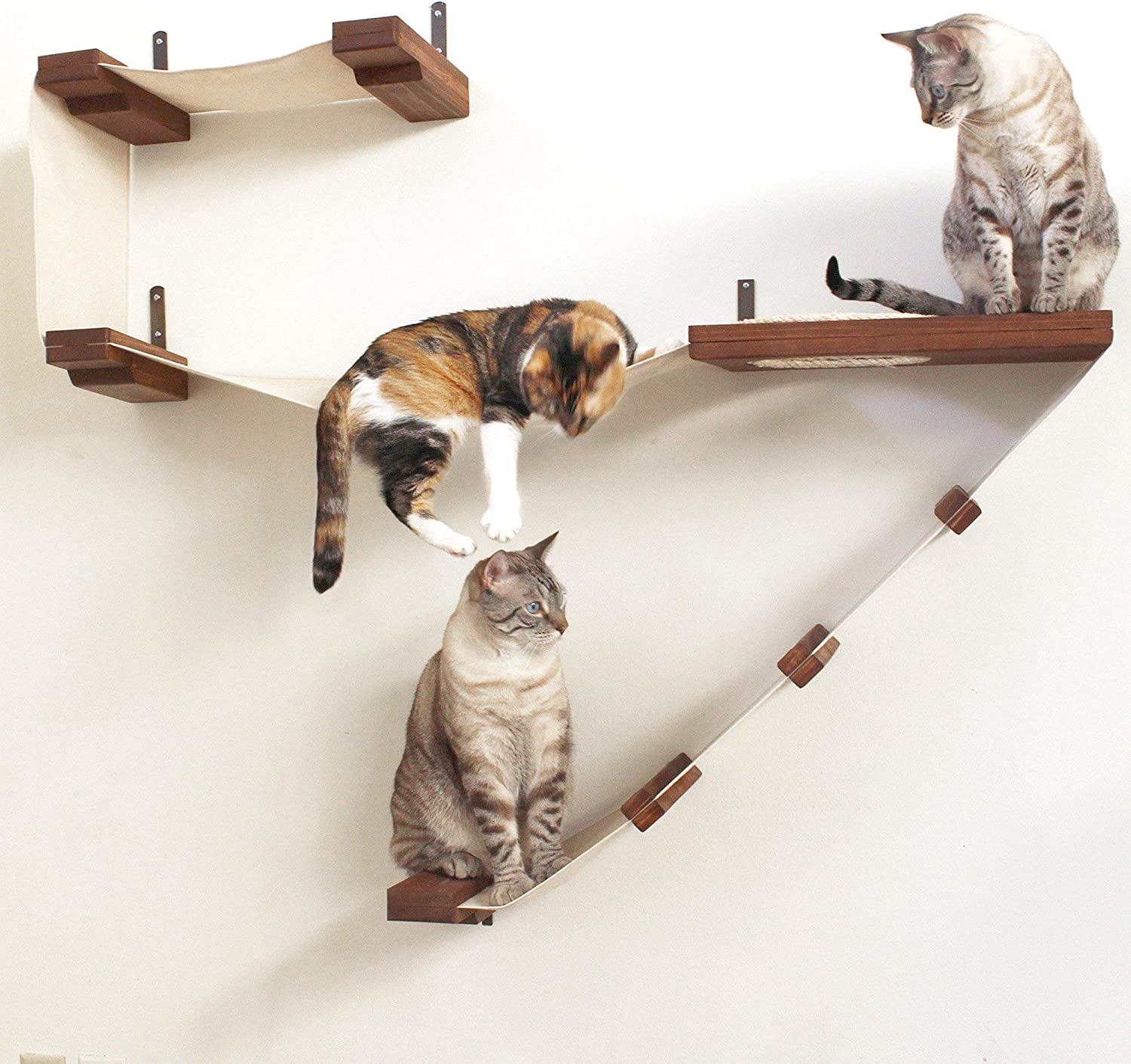 CatastrophiCreations Deluxe Cat Playplace  Cat Hammock & Climbing Activity Center  Handcrafted wallmounted cat tree