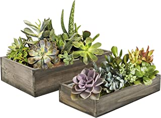 CYS EXCEL Indoor Rustic Planter Box, 15, Wood Planter, Decorative Box, Succulent and Floral Arrangements, Indoor Use Wood Box with Removable Liner, Wedding Decor (1, H:2