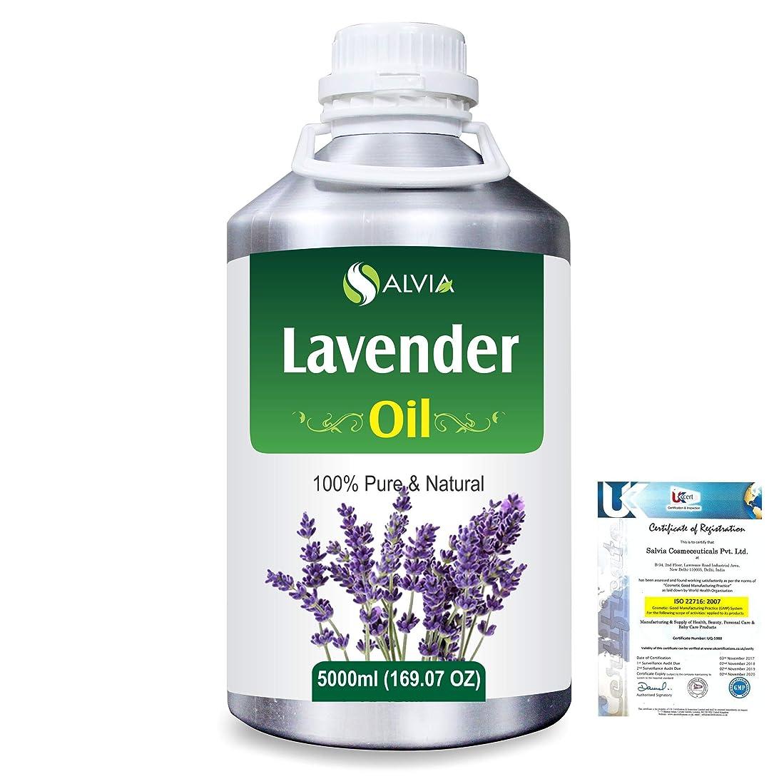 ピアノを弾く運命ファイターLavender (Lavandula officinalis) 100% Natural Pure Essential Oil 5000ml/169fl.oz.