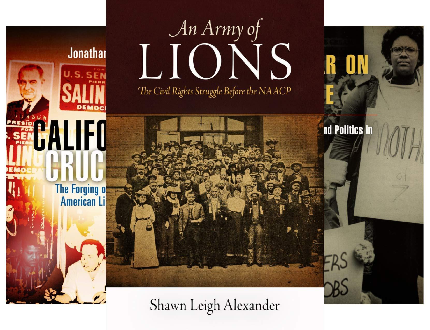 Politics and Culture in Modern America (31 Book Series)