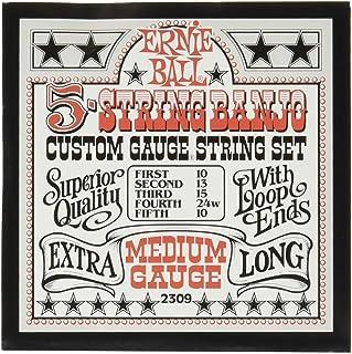 Ernie Ball 5-string Banjo Medium Stainless Steel Loop End Set.010 - .024w
