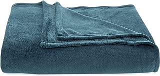 Berkshire Blanket Plush Serasoft Polartec Warmth Technology Bed Blanket, Full/Queen, Atlantic Blue