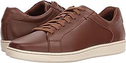 Shapley Sneaker II