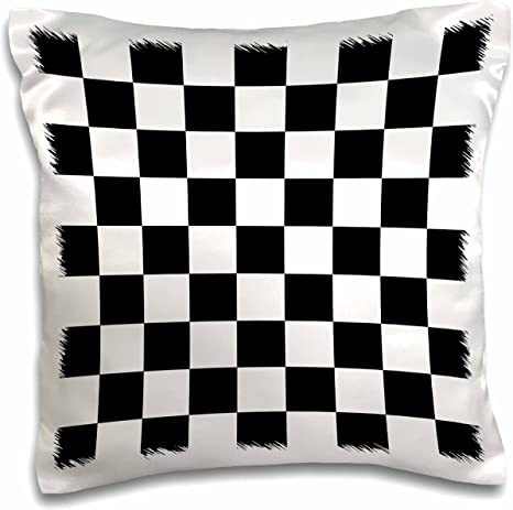 Amazon Com 3drose Check Black And White Pattern Checkered Checked Squares Chess Checkerboard Or Racing Car Race Flag Pillow Case 16 By 16 Pc 154527 1 Arts Crafts Sewing