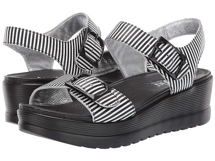 Alegria  Morgyn (Stripes) Womens  Shoes