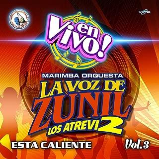 Zuni - Mix 18: La Frontera / Borracho de Amor / Los Alambrados / El Retrato de Mi Madre / Mándale una Carta a Tu Marido (En Vivo)