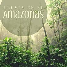 Lluvia en el Amazonas