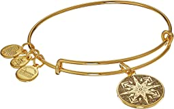 Alex and Ani - Color Infusion Healing Love Bangle