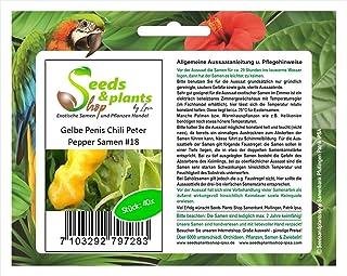Stk - 40x Penis Chili Peter Pepper gelbe Gemüse Pflanzen - Samen #18 - Seeds Plants Shop Samenbank Pfullingen Patrik Ipsa